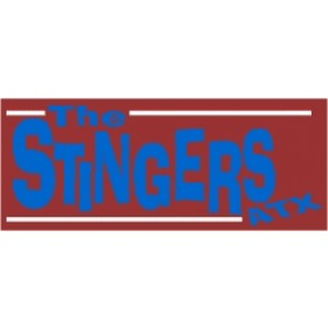 PVC sticker 'Stingers ATX - angular'