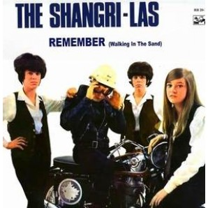 The Shangri-Las Wishing Well / I Hate To Say I Told You So