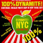 V.A. '100% Dynamite NYC! Vol. 2'  2-LP