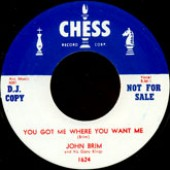 Brim, John 'You Got Me Where You Want Me' + 'I Would Hate To See You Go'  7""