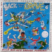 V.A. 'Back From The Grave Vol. 6'  LP
