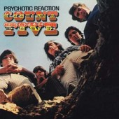Count Five 'Psychotic Reaction'  LP