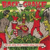 V.A. 'Back From The Grave Vol. 10'  LP