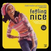 V.A. 'Feeling Nice Vol. 4'  gatefold 2-LP with mp3 code