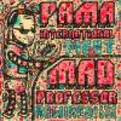 Pama International 'Meet Mad Professor: Rewired in Dub'  LP  back in stock!