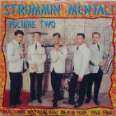 V.A. 'Strummin' Mental Vol. 2'  LP